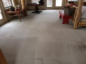 Carpet Cleaning in Grand Junction and Redlands